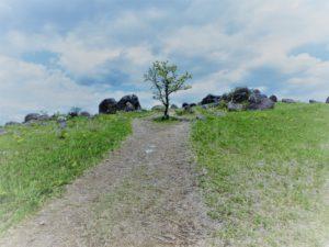 シュメール文字の場所 パワースポット押戸石の丘の巨石群【熊本おすすめ観光スポット】
