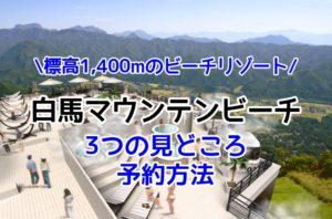 レジャー|白馬マウンテンビーチは標高1,400mのビーチリゾート【3つの見どころ・予約方法】