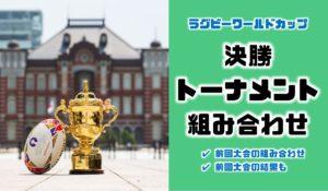 日本は南アフリカと対戦|ラグビーワールドカップ決勝トーナメントの組み合わせ(トーナメント表)【前...